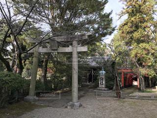 神社の写真・画像素材[430175]