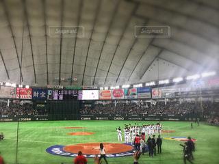 野球の写真・画像素材[568378]