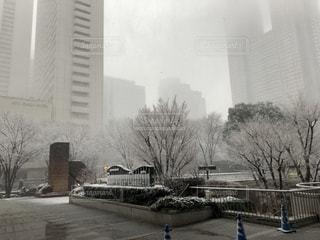 大きな白い建物の写真・画像素材[1062456]