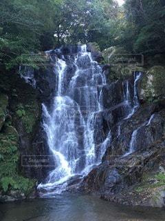 自然の写真・画像素材[16001]