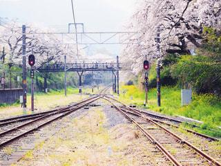 線路の先の写真・画像素材[1980110]