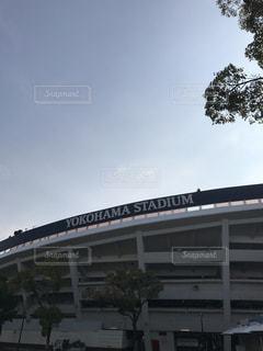 #横浜  #横浜スタジアムの写真・画像素材[414172]