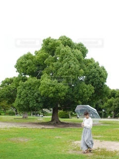 傘を持って立ってる女の子の写真・画像素材[3399062]