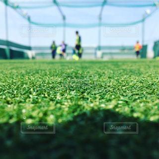 スポーツの写真・画像素材[414303]