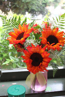 花の写真・画像素材[431113]
