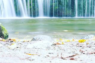 白糸の滝の写真・画像素材[763282]