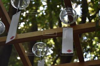 川越氷川神社の写真・画像素材[625341]