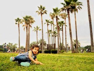 ヤシの木の横に立っている少年の写真・画像素材[765946]