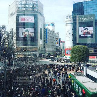 渋谷の写真・画像素材[416256]