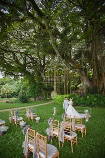 結婚式の写真・画像素材[416385]
