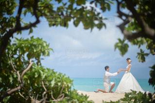 結婚式 - No.416409
