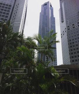 No.508446 シンガポール