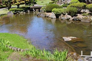 池 - No.436901