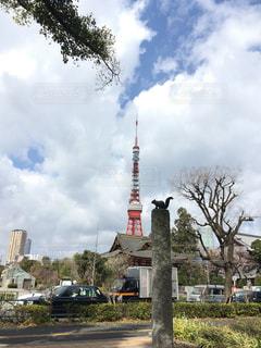 東京タワー 芝公園の写真・画像素材[419704]