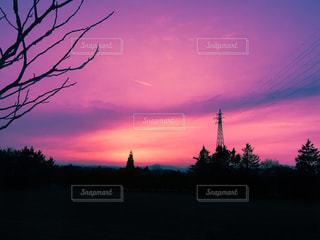 赤の写真・画像素材[419471]