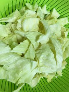 野菜 - No.425052
