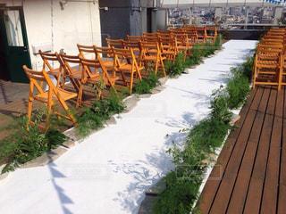 庭の木製ベンチの写真・画像素材[814206]