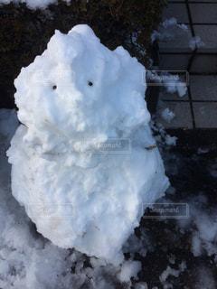 冬の写真・画像素材[421064]