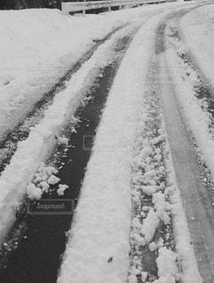 冬の写真・画像素材[423606]