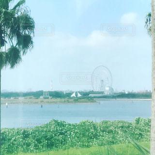 水の体の上の橋の写真・画像素材[732182]