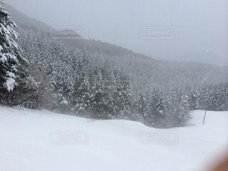 雪 - No.420969