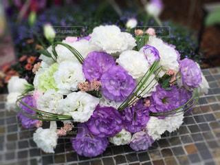 花の写真・画像素材[467244]