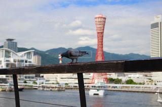 風景 - No.517765