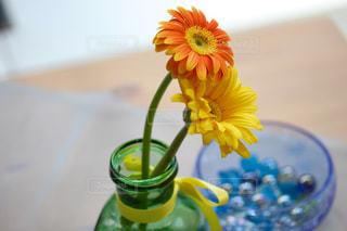 花の写真・画像素材[577145]