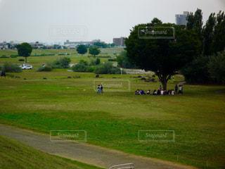 草原の写真・画像素材[581099]