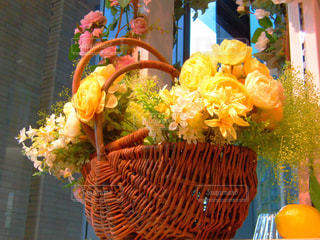 花の写真・画像素材[581123]