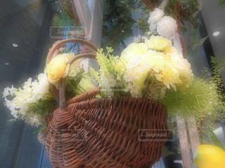 花の写真・画像素材[581132]