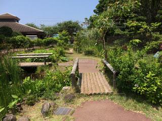風景 - No.421854