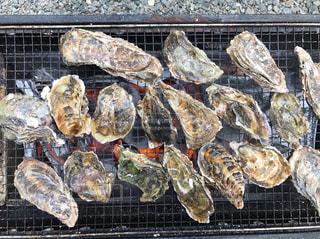 牡蠣の写真・画像素材[422398]