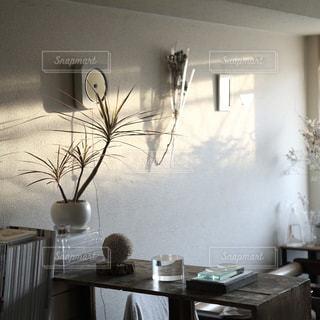 #インテリア #ディスプレイ #myroom #interior #display #部屋 #ナチュラル - No.422984