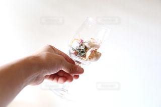 花の写真・画像素材[434109]
