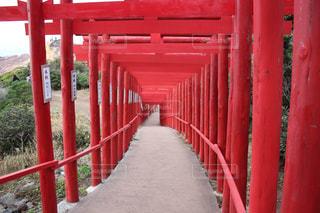 赤い鳥居の写真・画像素材[925252]