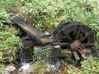 みたき園の水車の写真・画像素材[838193]
