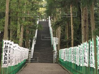 和歌山の写真・画像素材[438110]