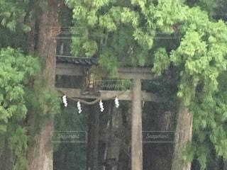 和歌山の写真・画像素材[440771]