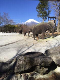 No.440302 富士山