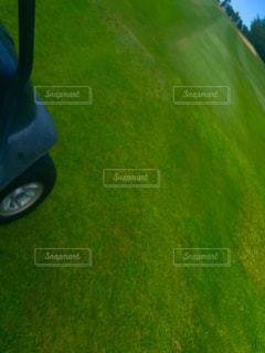 芝生の写真・画像素材[700670]