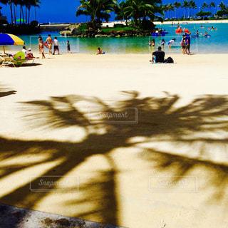 水の体の近くのビーチの人々 のグループ - No.715846