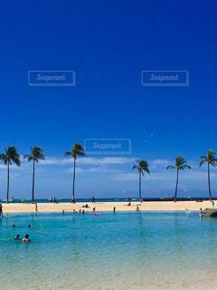 水の体の近くのビーチでヤシの木のグループ - No.718349