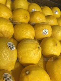 オレンジの山 - No.748607