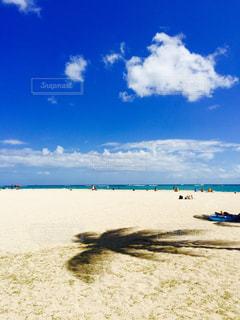 海の横にある砂浜のビーチ - No.978684