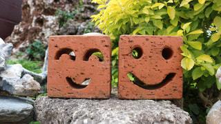 Smile - No.427136