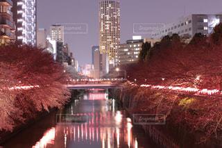 風景 - No.427462