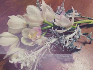 花の写真・画像素材[436560]