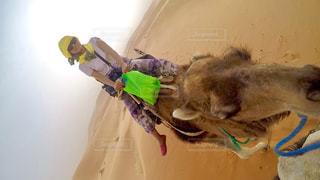 砂漠の写真・画像素材[609445]