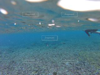 サーフィンの写真・画像素材[443872]